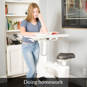 flexispot desk bike -standing desk