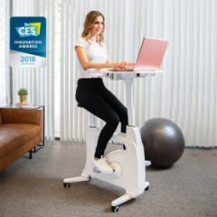Flexispot Exercise Desk Bike