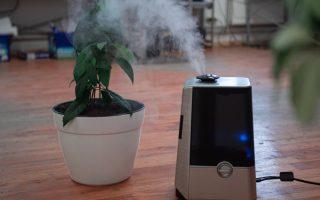 best humidifier